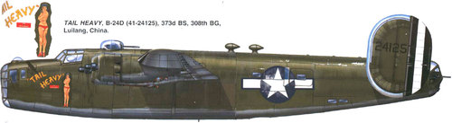 Consolidated B-24 Liberator/PB4Y Privateer | 41-24125 | 24125