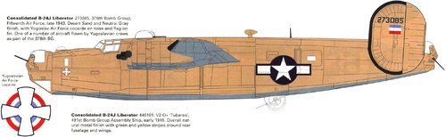 Consolidated B-24 Liberator/PB4Y Privateer | 42-73085