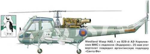 Westland Scout/Wasp | XS527